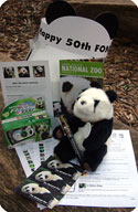 national zoo baby panda, hotel panda packages